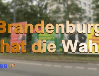 Wahl Brandenburg 2019